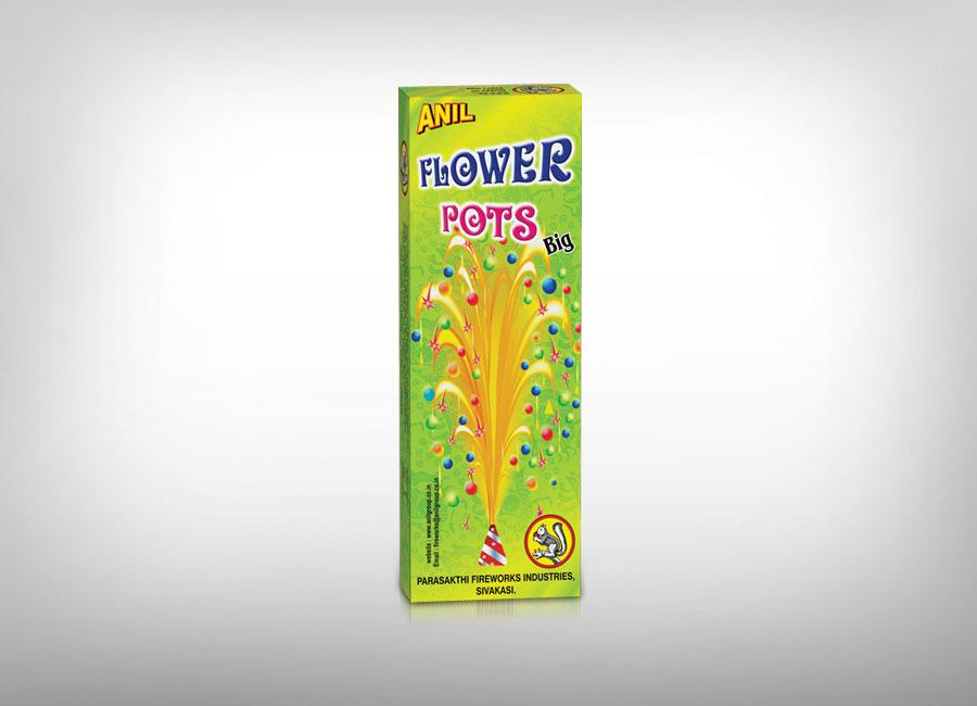 Anil Flower Pots - Ashoka