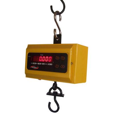 Axpert Crane Scales Type 3